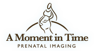 A Moment in Time Logo